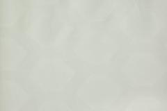 332_Blossom_2_Beam_Limestone/Beam 300 100% Polyester Бельгия 2 200 руб.